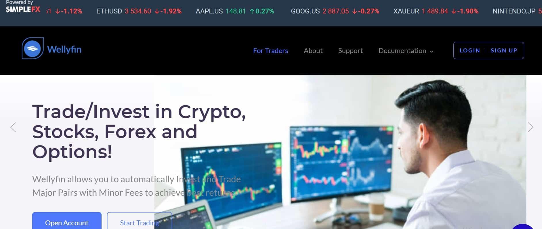 Wellyfin website